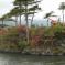 גני פריחת הדובדבן ביפן